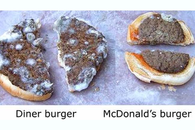 マクドナルドは腐らない