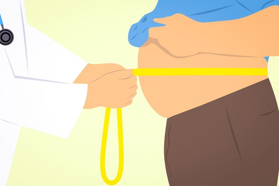 obese-3011213_960_720