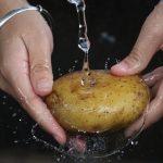 potato-2469750_960_720
