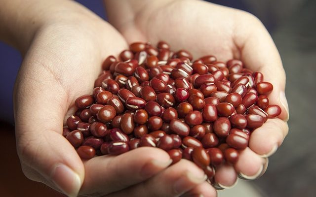 red-beans-587592_640