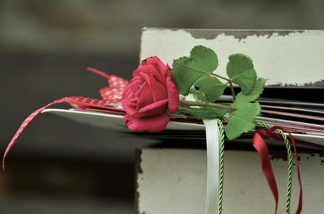 rose-889572_640