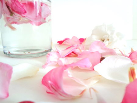 rose eater 10