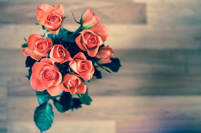 roses-690085_640