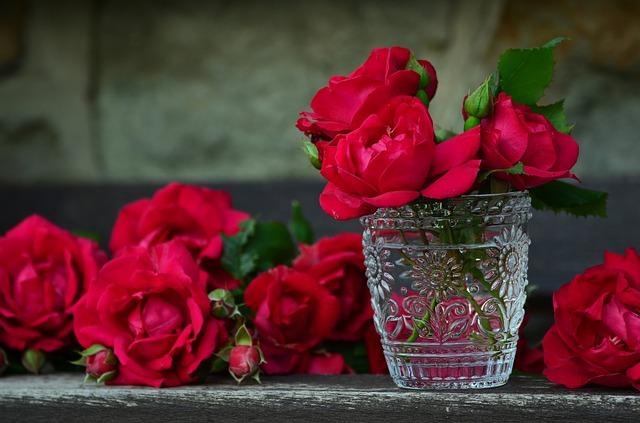 roses-821705_640