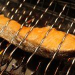 salmon-1759530_960_720