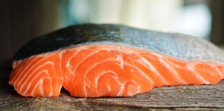 salmon-3139390_640