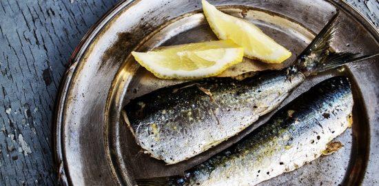 sardines-1489626_960_720
