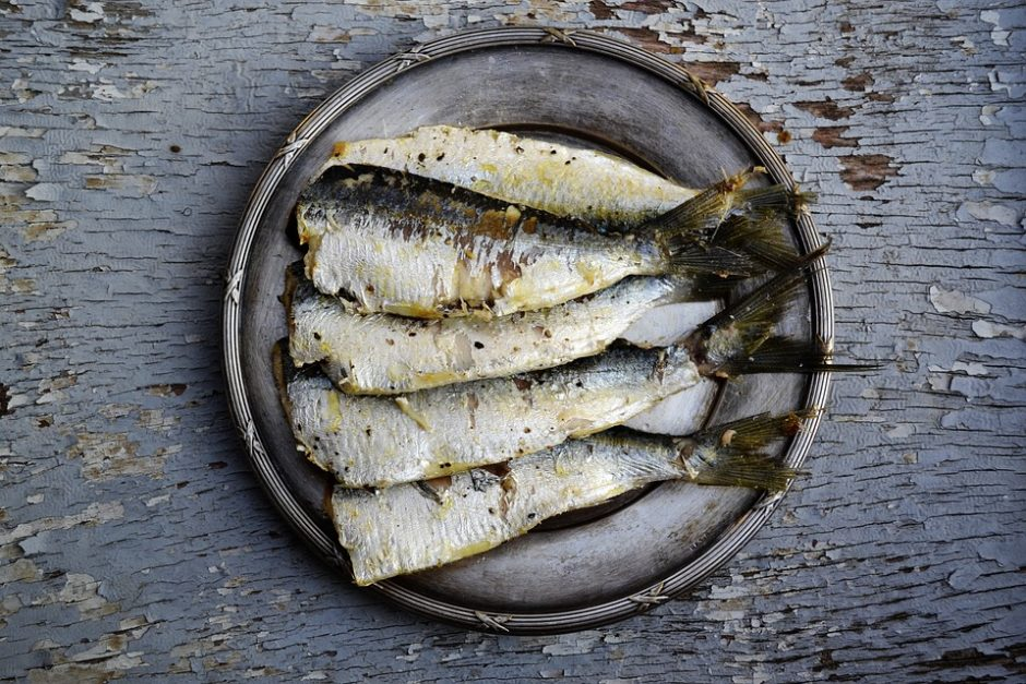 sardines-1954911_960_720