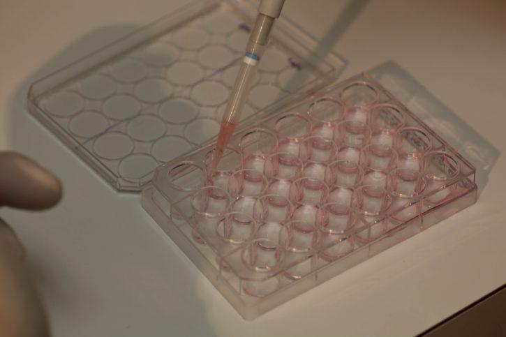 Scientist genetic testing