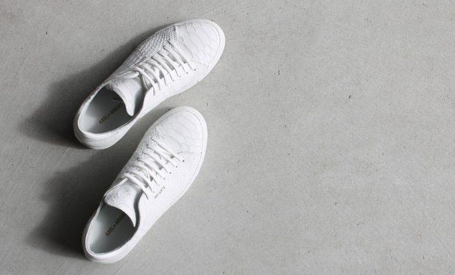 shoes-1592165_960_720