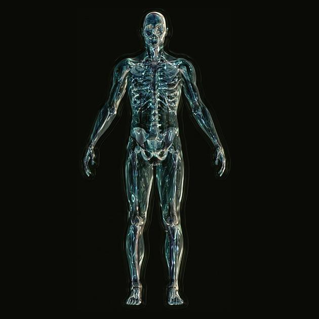 skeleton-1243818_640