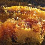 soil-honey-1534287_960_720