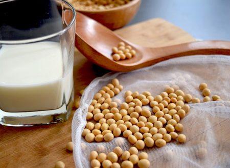 soy-milk-2084018_640