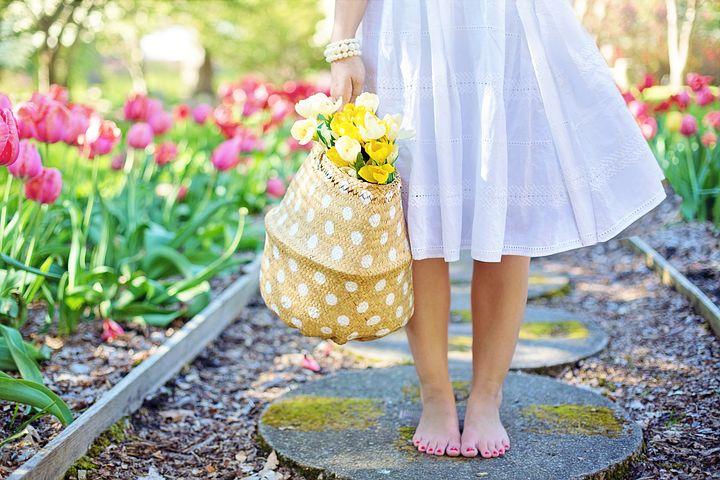 spring-2298279__480