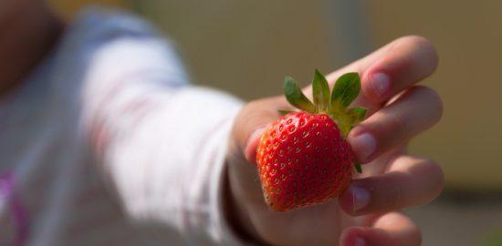 strawberries-1955280_960_720