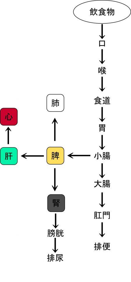 sukokuseibitaisha_no_zu