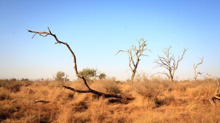 swaziland-2637333_640