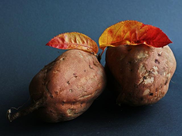 sweet-potato-534874_640