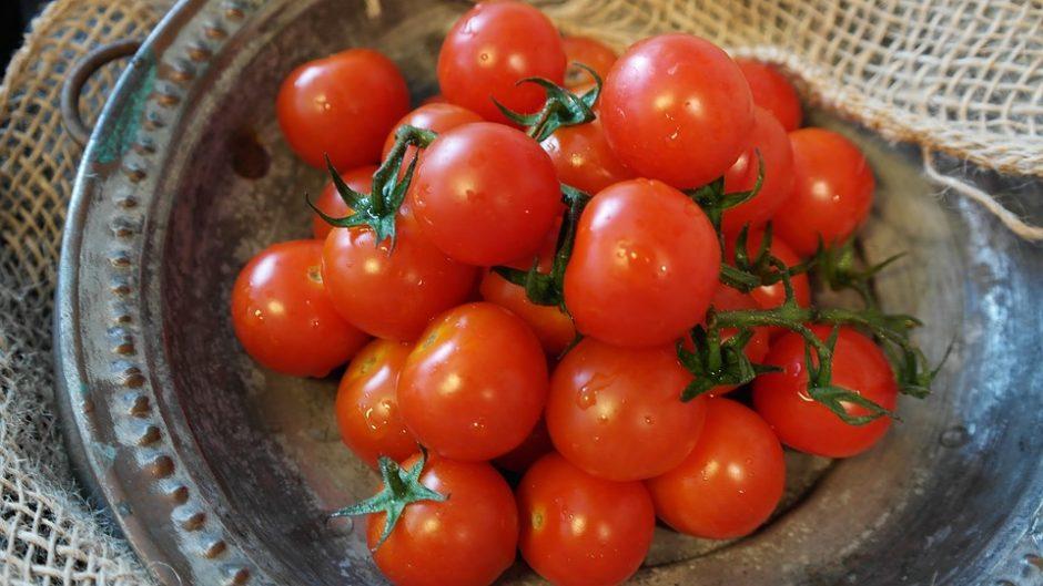 tomatoes-2559791_960_720