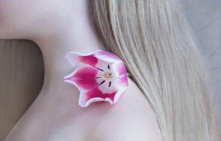 tulip-1309666_640