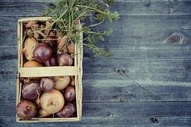 vegetables-1679947__180