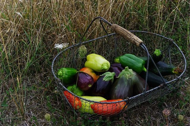 vegetables-2726801_640