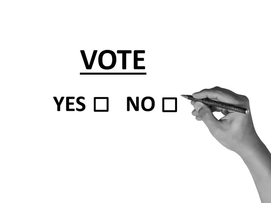 vote-2042580_960_720