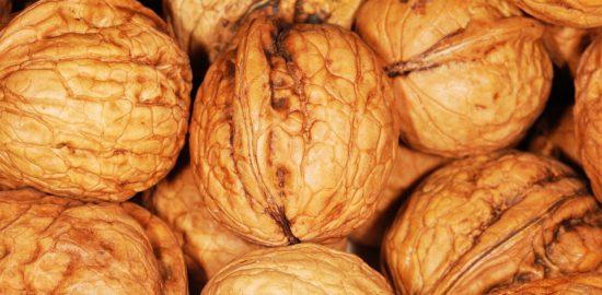 walnut-101462_960_720