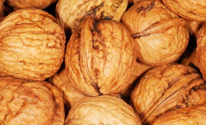 walnut-101462_960_720-1-660x400