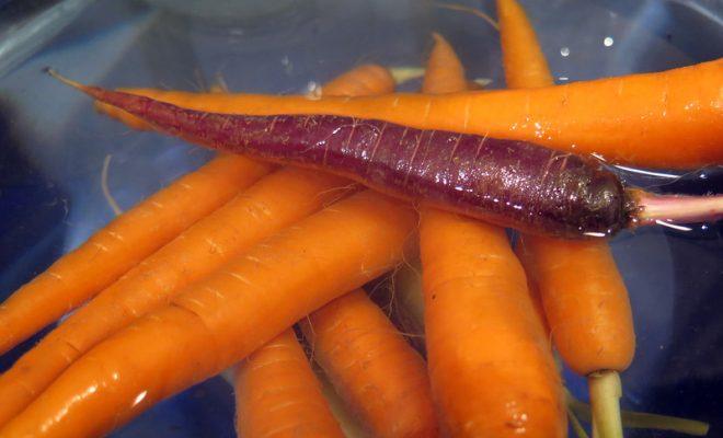 water-purple-orange-food-produce-vegetable-394492-pxhere.com