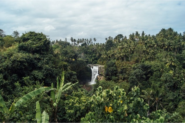 waterfall-1031597_1280