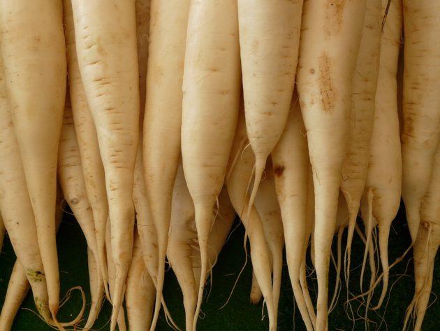 white-radish-5756_960_720