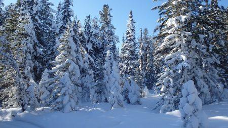 winter-2168642_640
