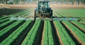 中国産はダメ、国産野菜を選択するという人へ。 もはや日本の農薬規制緩和は中国産野菜の残留農薬どころではありません