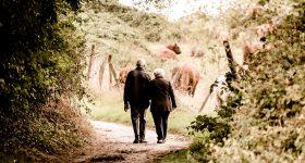 将来歩けなくなるかも!老後、元気でいるために今できること。あなたの体年齢をチェックしてみましょう