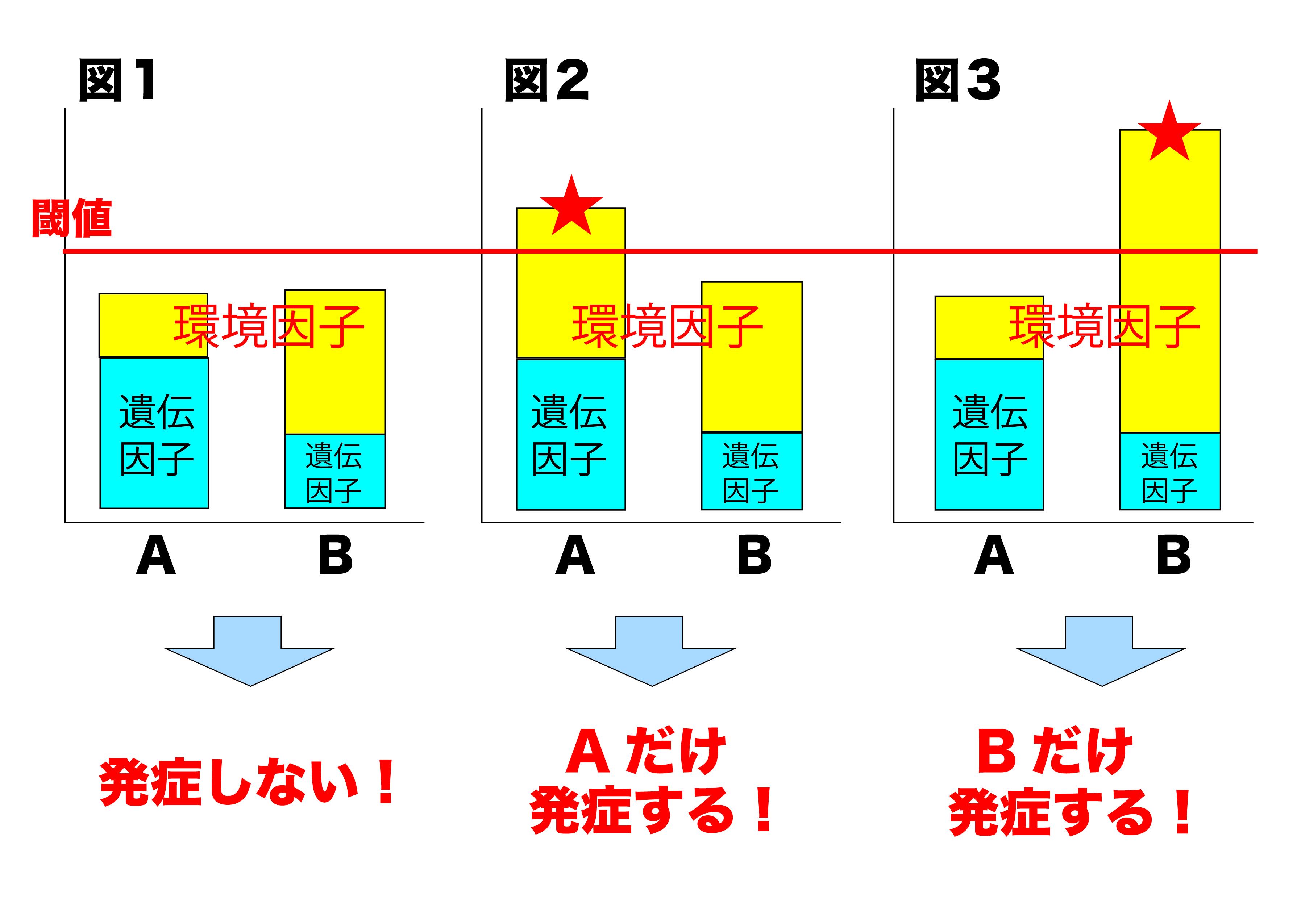 遺伝因子と環境因子3-02
