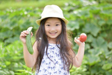 子供トマトキュウリ_a6972c3df03820df7f7d54ac14359d54_s