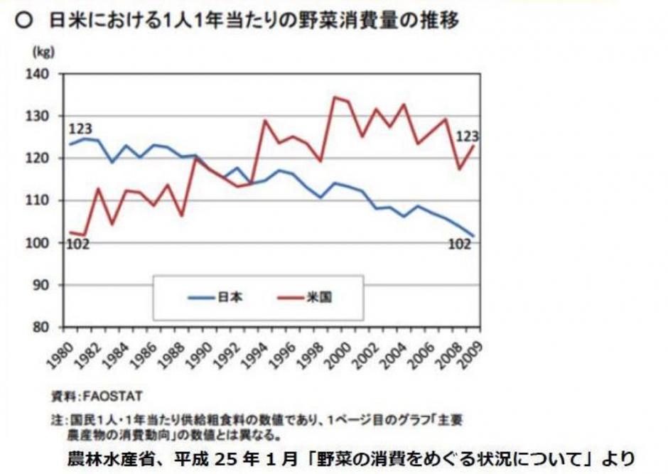 日米野菜摂取量比較