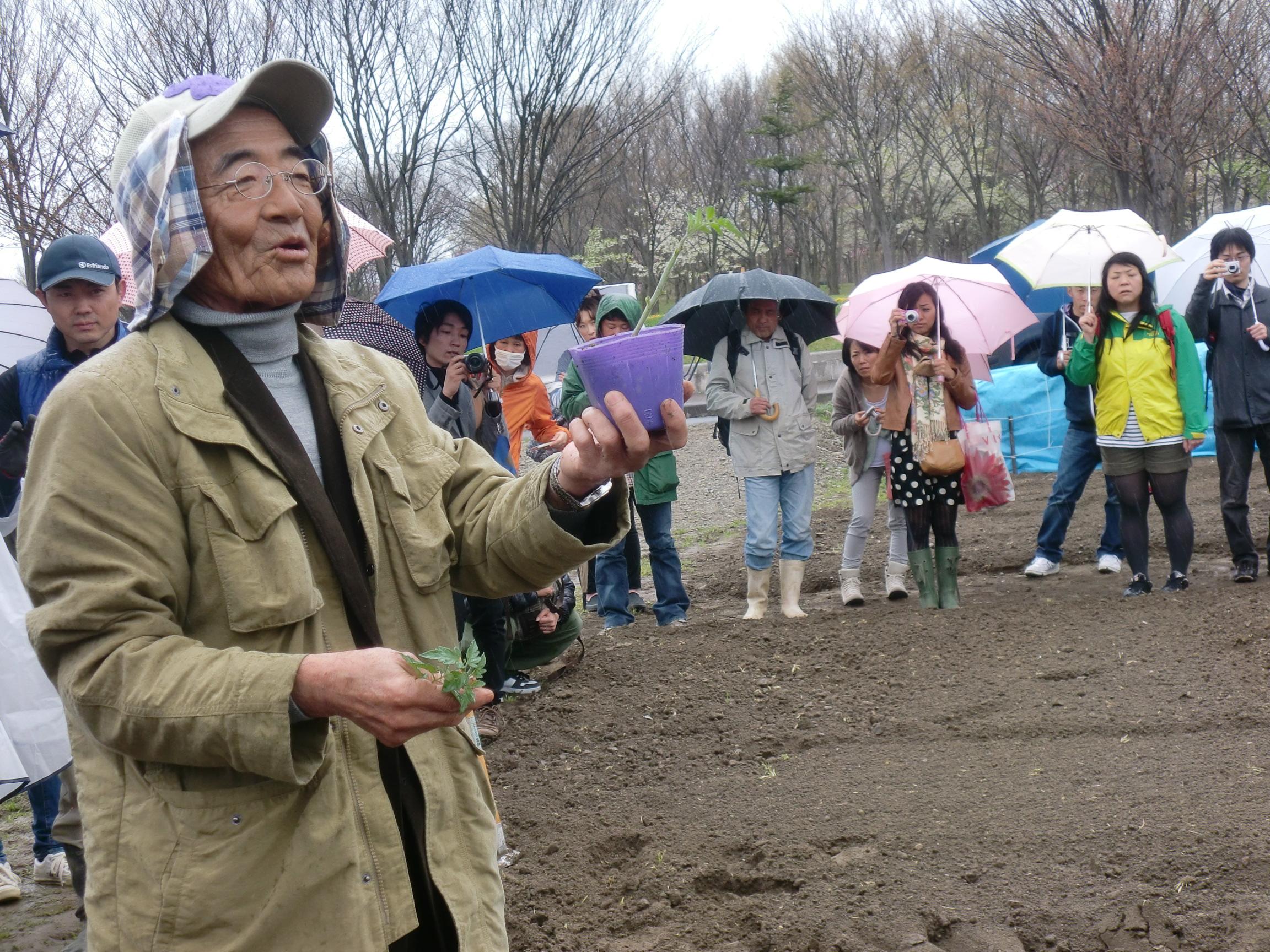 木村秋則自然栽培