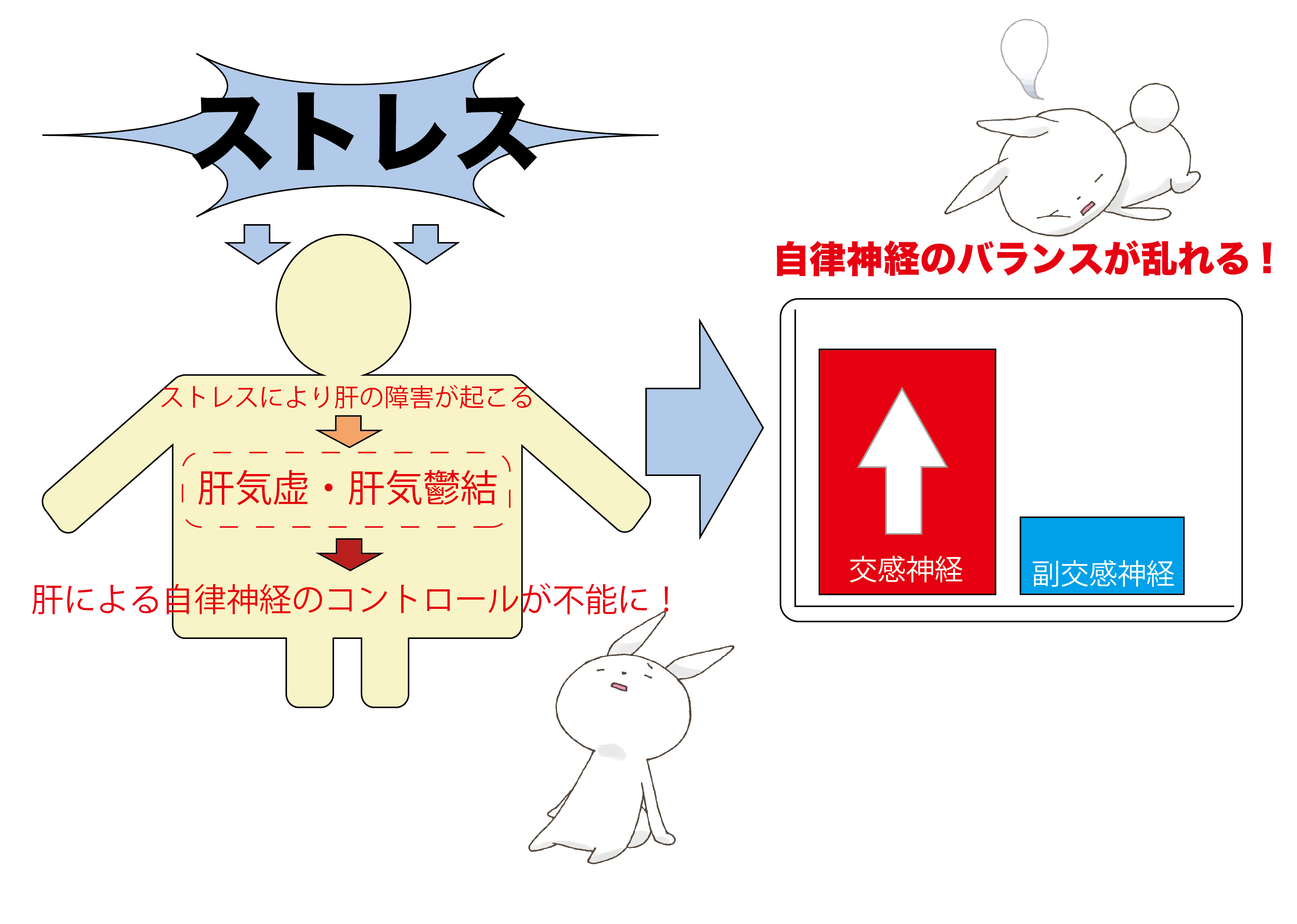 自律神経バランス図222-01