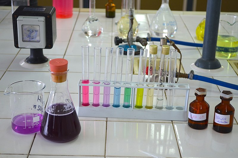 800px extract of red cabbage in the beacker (ph indicator)