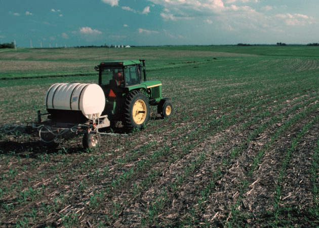 Fertilizer_applied_to_corn_field