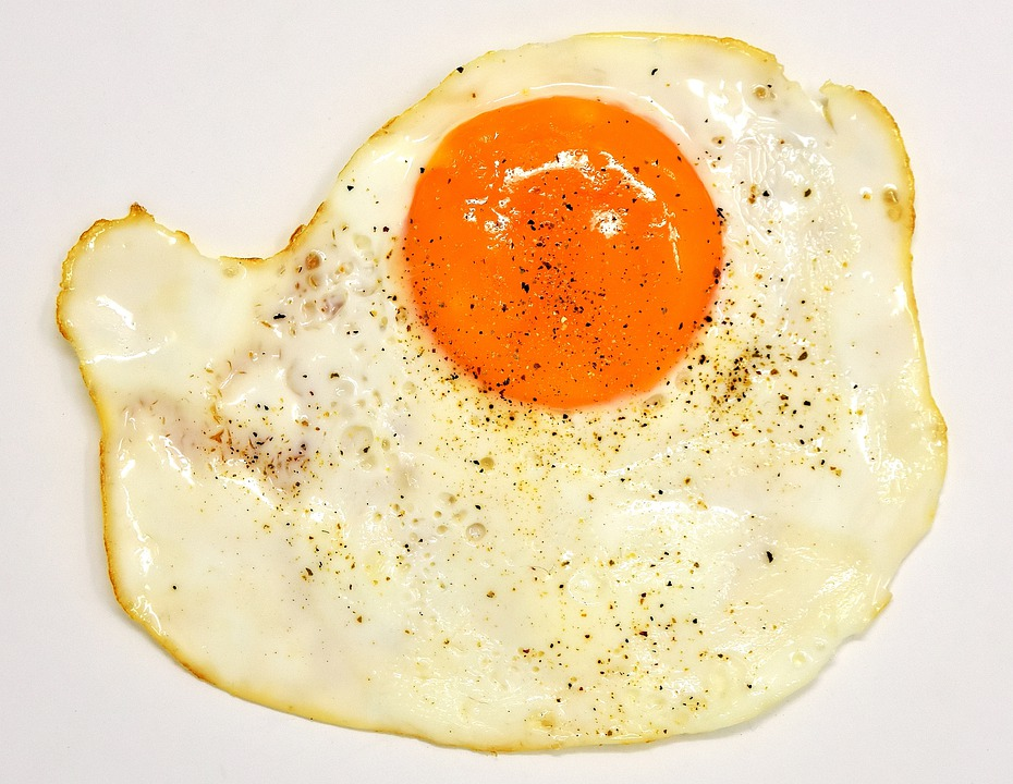food delicious eat egg yolk protein fried yolk