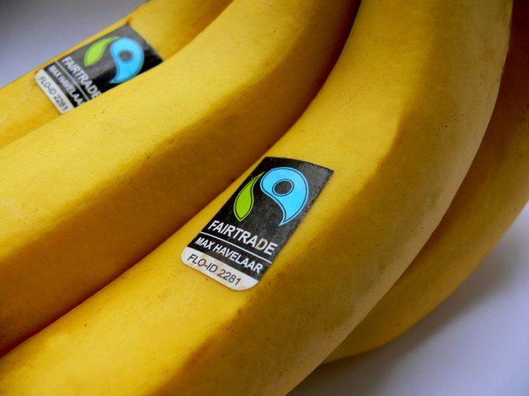 havelaar banana