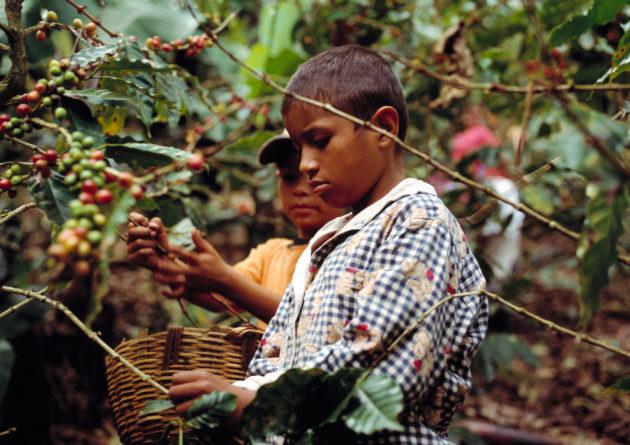 Nicaragua_3_GHR_19_(10727895765)