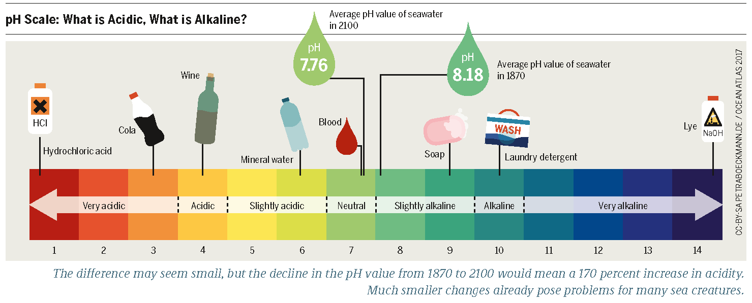 ph scale  acidic vs. basic (alkaline)