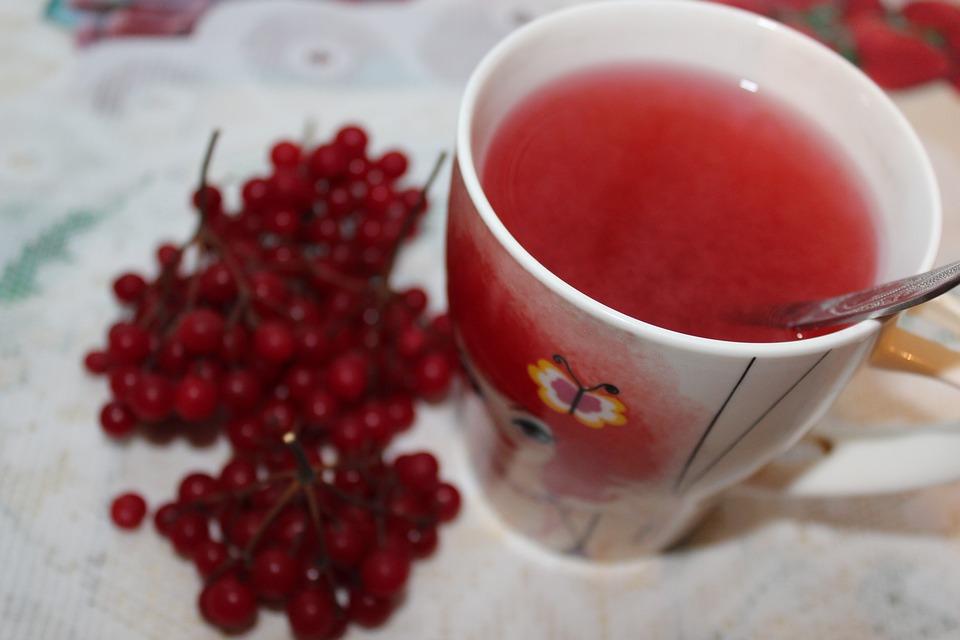 tea with viburnum viburnum berries viburnum tea