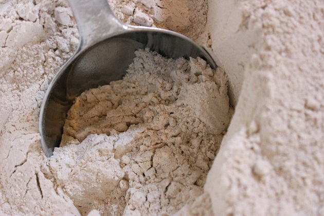 whole wheat grain flour being scooped