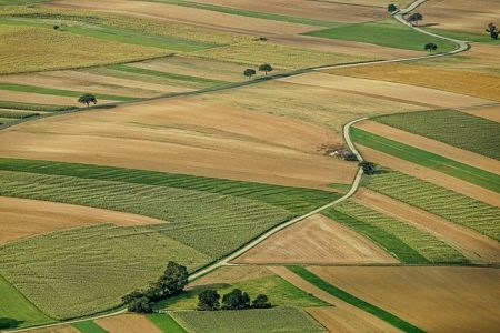 agriculture-3195381_640