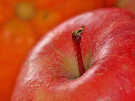 apple-1081105__340